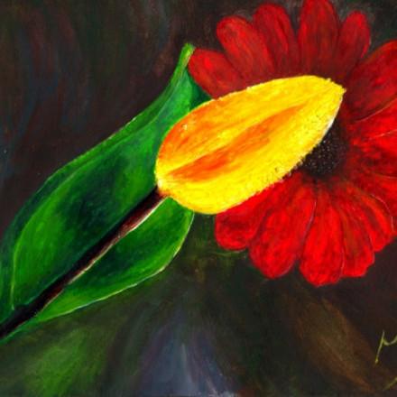 Daffodil_MG01web